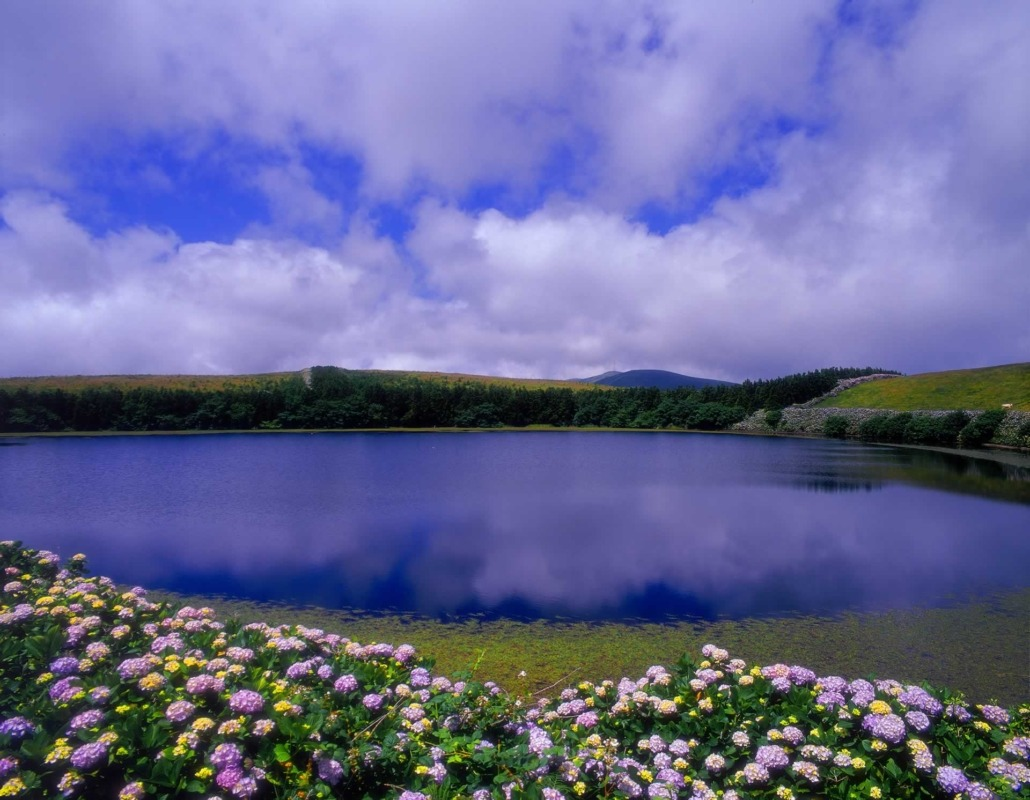 L'île de Flores, immense jardin naturel de fleurs colorées avec ses sept lacs de forme circulaire insérés dans d'anciens cratères