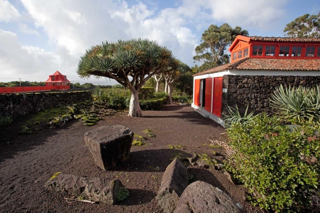 Installé dans le couvent des carmélites, le musée du vin abrite les chais et l'alambic, île de Pico