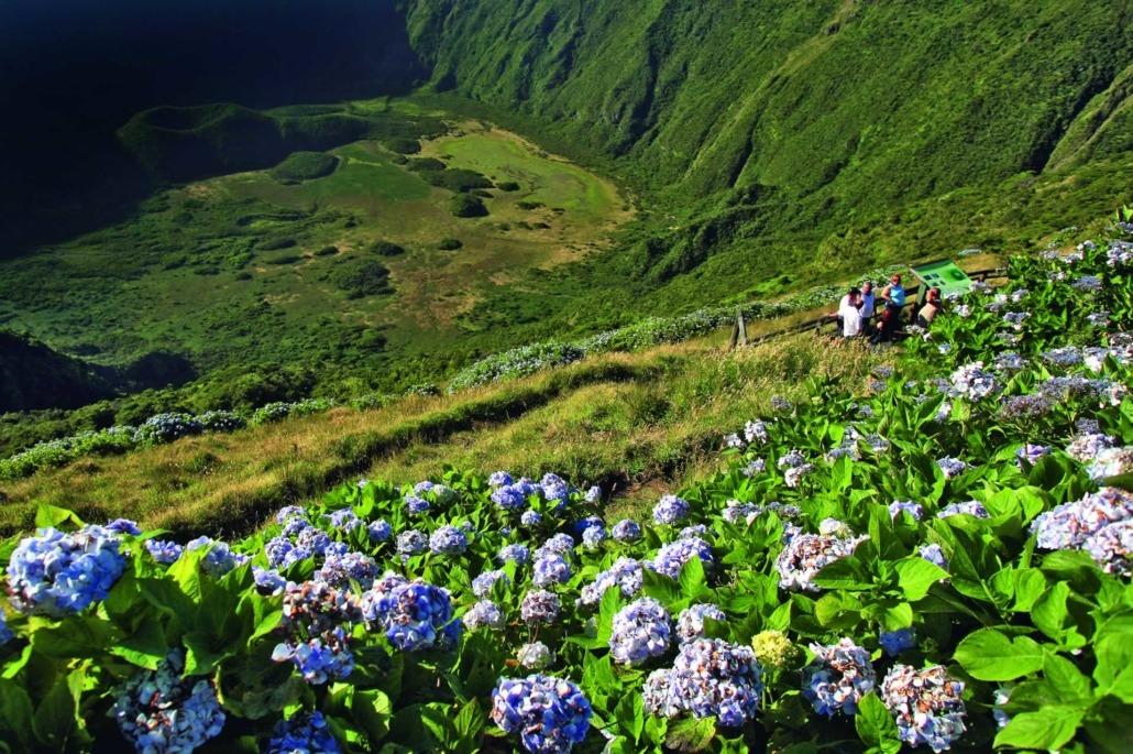 La Caldeira, cône volcanique abritant des populations rares de flore endémique, île de Faial, classée réserve naturelle