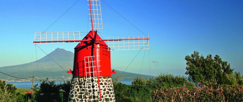 Île de Faial agrémentée de pittoresques moulins à vent rouges d'Espalamaca, datant des XIXe et XXe siècles