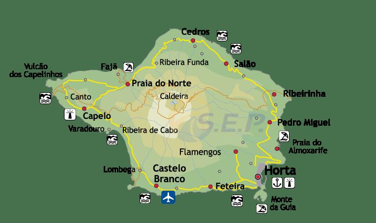 Île des Açores Faial, l'île bleue, sanctuaire des grands mammifères marins